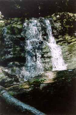 Picture of Carpenter's Falls - Granby, CT