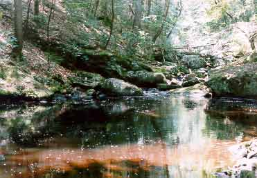 A pool downstream from Enders Fall number 1.