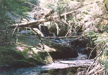 Picture of Enders Fall #3 - Granby, CT