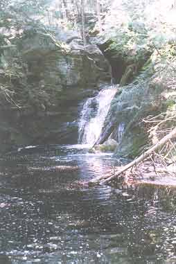Picture of Enders Fall #5 - Granby, CT
