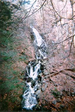 Picture of Roaring Brook Falls - Cheshire, CT