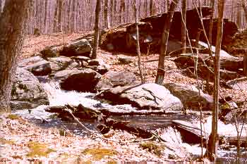 Picture of Shelter Falls - Mansfield (Mansfield Four Corners), CT